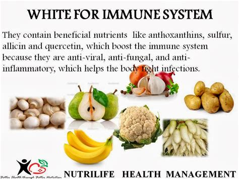 Immune System Detox Diet by Healthy Diet For Immune System Weight Loss Vitamins For