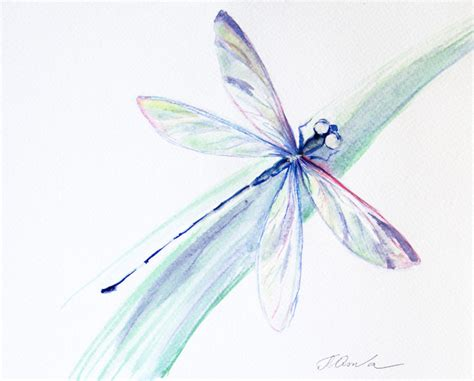 original watercolor painting dragonfly painting dragonfly