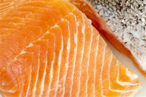 salmon food fresh salmon steak free stock image