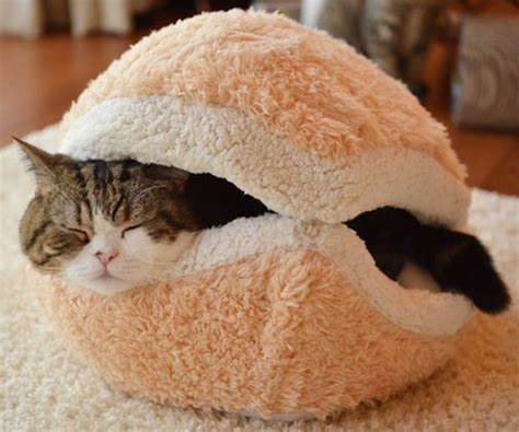 cat burger bed hamburgers cats and cat houses on pinterest