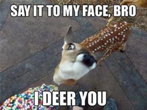 Funny Deer Memes - random funny memes 12 pics