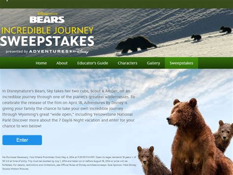 Journeys Sweepstakes - disney bears incredible journey sweepstakes