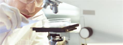 lab test find your lab test reference lab affiliated