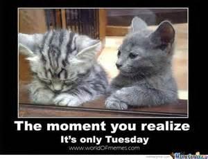 Meme Tuesday - tuesday by trolalalalala meme center
