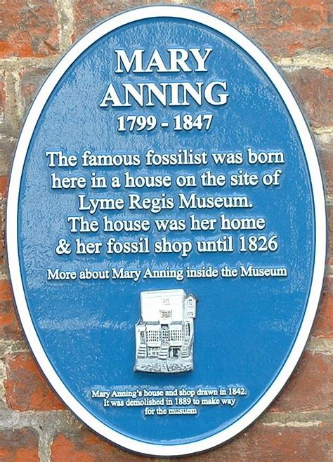 biography of mary anning ks2 mary anning wikis the full wiki