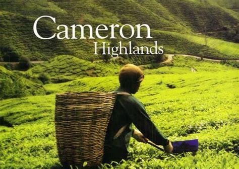 mohd nur faizul cameron highlands