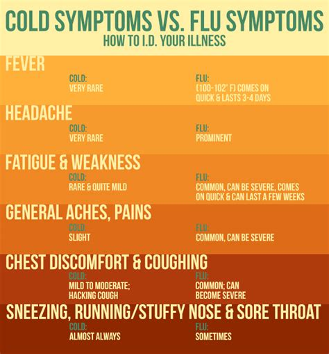 taking drugs to treat your flu symptoms can kill other 7 homegrown cold and flu home remedies health health