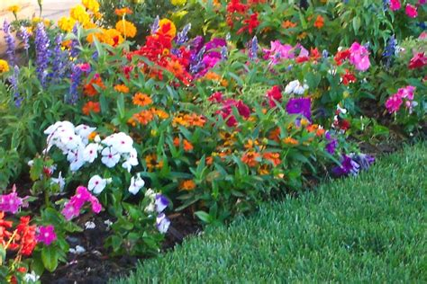 Designing A Flower Garden Layout Garden Design With Flower Ideas Pictures Beautiful Flowers Landscaping Front Yard From Small