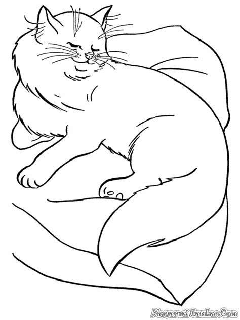 Mewarnai Gambar Kucing | Mewarnai Gambar