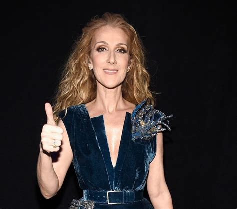 celine dion hockey mom celine dion dances at son s hockey game in quebec