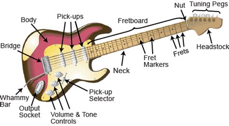 need to the parts of the electric guitar