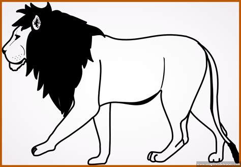 imagenes de leones faciles para dibujar imagenes de leones para dibujar a lapiz archivos