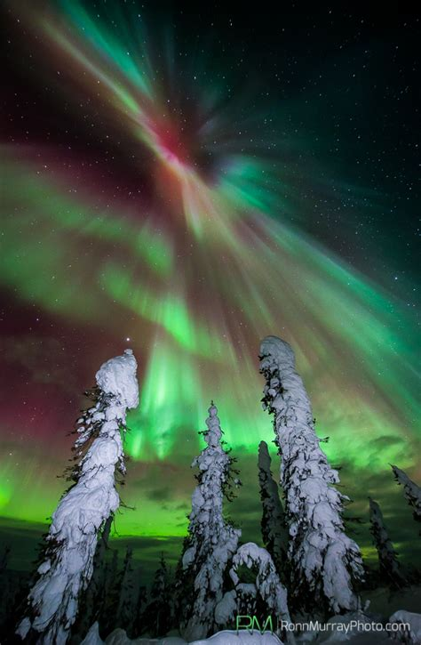 what causes northern lights alaska how to view and photograph the northern lights alaska