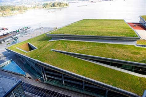green roof toronto becomes first city in na to mandate green roofs