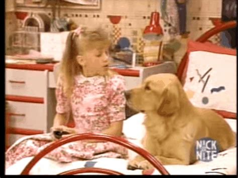 the dog from full house full house glasses gif find share on giphy