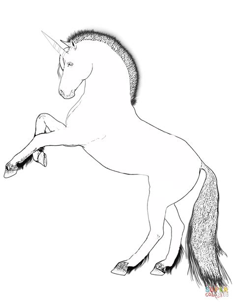 mystical unicorn coloring page 94 coloring pages for unicorns unicorn fantasy myth