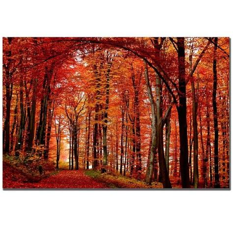 by philippe sainte laudy red for love philippe sainte laudy the red way medium canvas art
