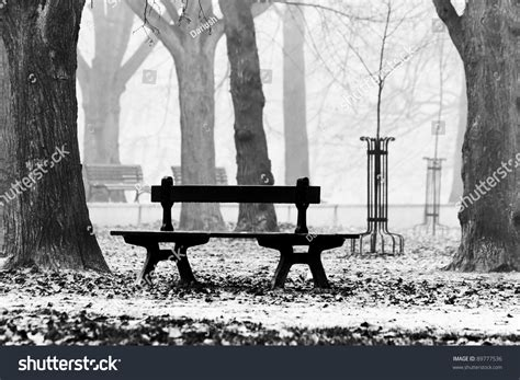 black and white bench bench in the autumnal park black and white stock photo