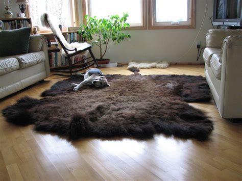 buffalo rugs buffalo rugs rugs ideas