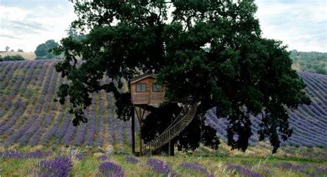 la casa sull albero viterbo agriturismo casa sull albero pernottamento in una casa