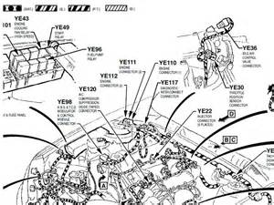 vt commodore fuel wiring diagram vt get free image