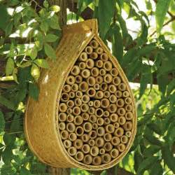 Raising Honey Bees In Your Backyard Mason Bee House Attract Nature S Best Non Stinging