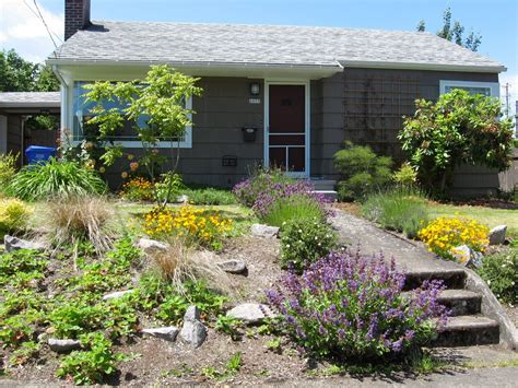 Yard With Decorative Rock Landscaping Ideas Blooming by Garden And Patio Low Maintenance Plants Flowers For Front