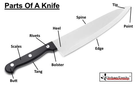 High End Kitchen Knives by Best Kitchen Knives Amp Knife Reviews Kitchensanity