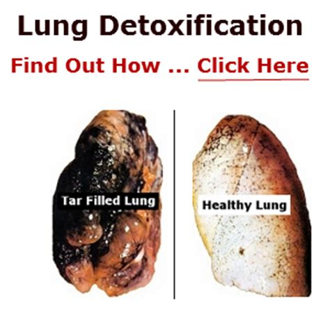 How To Detox Tobacco Damage by Lung Detoxification Review Quit And Detox The Lungs