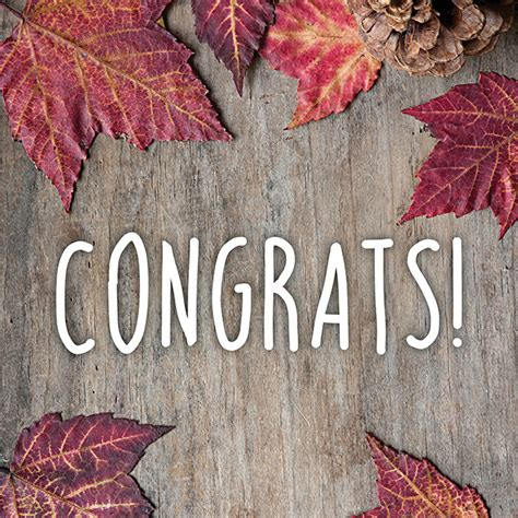 5 Days Of Giveaways - 5 days of fall giveaway winners evermine blog