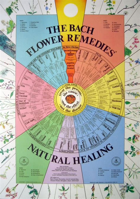 remedy fiori di bach bach flower remedies with chart