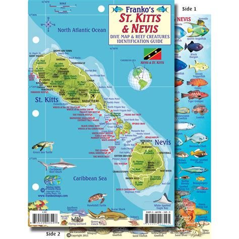 Kitts And Nevis Calendã 2018 33136 St Kitts And Nevis Saguaro Scuba