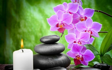purple flowers black stone  candle light hd