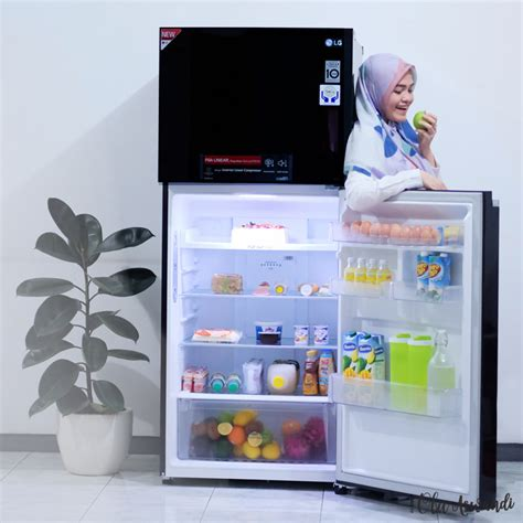 Lemari Es Freezer review lemari es lg linear top freezer ola aswandi