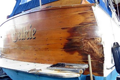 wooden boat leaks selkie woodenboat magazine
