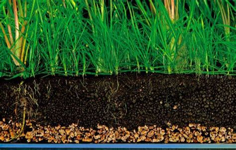 Soil Ada Amazonia By Draquatic ada amazonia soil powder type end 6 4 2016 3 15 pm myt