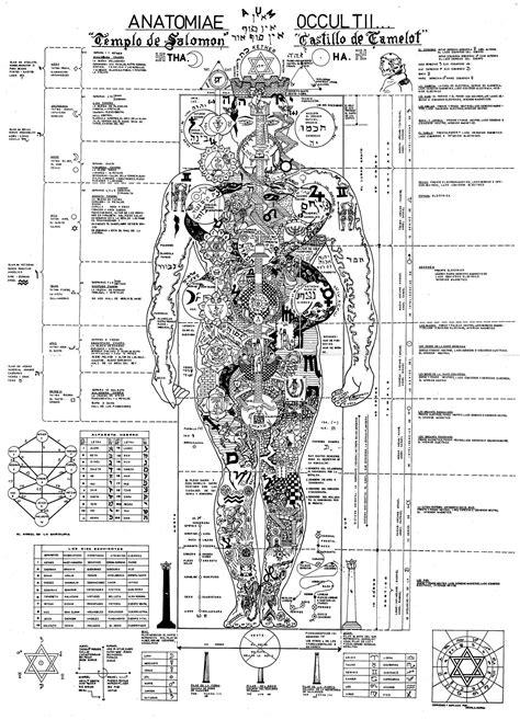 Anatomia Oculta - Templo de Salomão   Símbolos   Anatomía