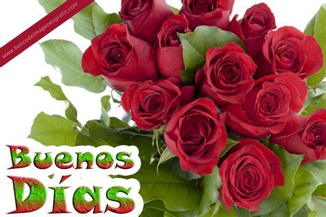 imagenes de buenos dias con rosas image gallery imagenes con rosas