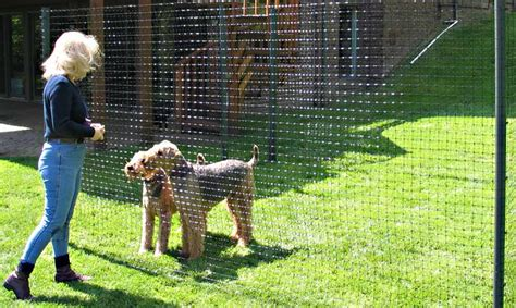 in house dog fence dog fence kit deluxe house trend design