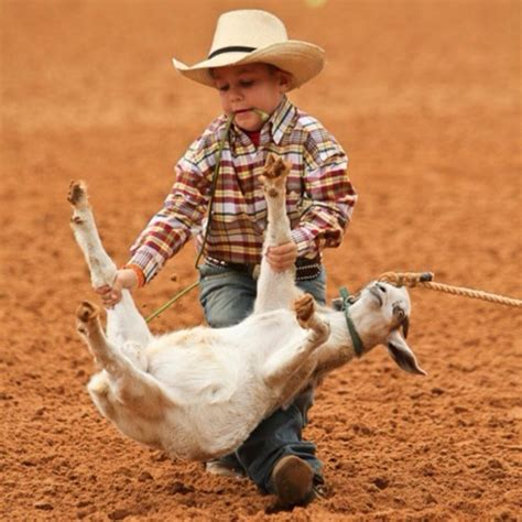 imagenes cowboy up 30 best images about cowboys are best dads on pinterest