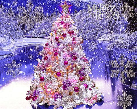beautiful christmas trees pictures wallpapers background