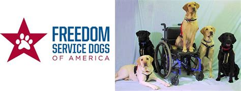 freedom service dogs 10 ways to support our troops this memorial day survival