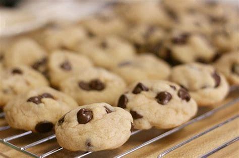 biscotti semplici e veloci da fare in casa biscotti semplici e veloci per la prima colazione ecco la