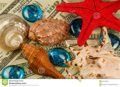 Nbc Shells Out Money For Royalty by Shells Starfish And Water Drops On Money Royalty Free