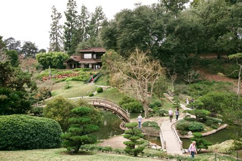 Huntington Library And Botanical Gardens by Huntington Library Luxe