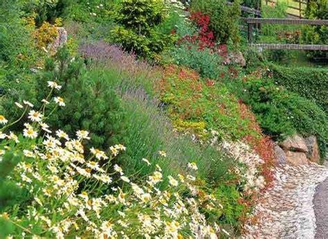 Quel Arbre Planter Proche D Une Maison by Les 25 Meilleures Id 233 Es De La Cat 233 Gorie Jardin En Pente
