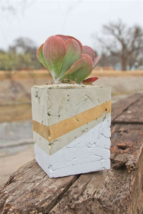 diy cement planters transformed cement planter camille styles