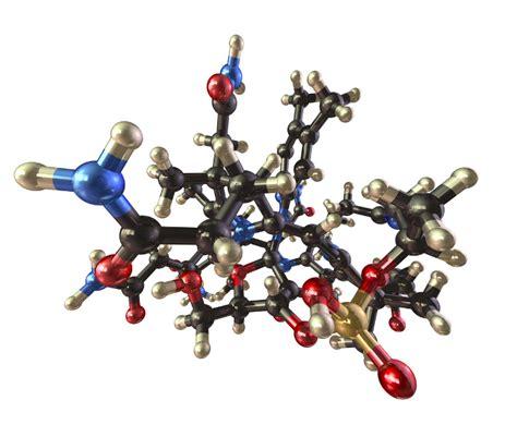 in alimenti si trova la vitamina b12 vitamina b12 alimenti usi propriet 224 e controindicazioni