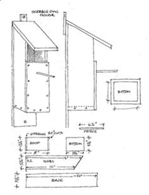 barred owl house plans barred owl house plans house design plans
