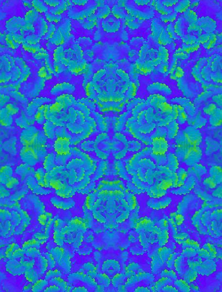 Blue Floral Boomber Printing 5152 best images about floral print and patterns on